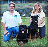 Links References Amp Rescue Dog Training Tampa Bay